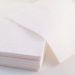 Serviette papier blanc 1 pli 30cm par 100