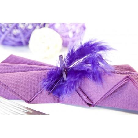 Sachet 20 plumes de décoration