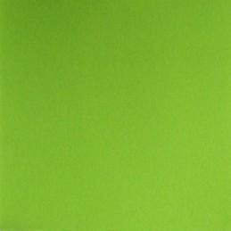 Serviette jetable double pointe 38cm par 40 vert anis